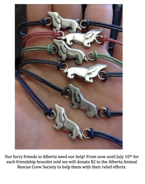 Our furry friends in Alberta need our help copy